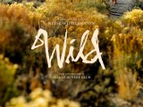 Review: Wild, 2014, dir. Jean-Marc Vallée