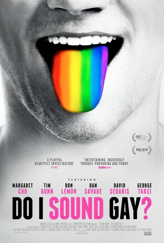 do-i-sound-gay-poster