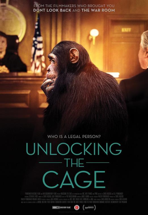 unlocking_the_cage