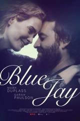 Review: Blue Jay, 2016, dir. AlexLehmann