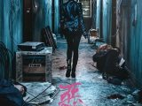 Review: The Villainess, 2017, dir. JungByung-gil