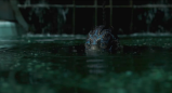 'The Shape of Water' Is Wonder and Nostalgia DoneRight
