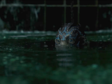 'The Shape of Water' Is Wonder and Nostalgia Done Right