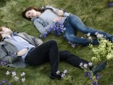 """How 'Twilight' Sparked A YA Craze It Then Helped Destroy"""