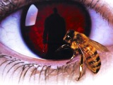"""""""In the Original 'Candyman,' Curiosity Is Recognized as Transgression (and Dealt with Accordingly)"""""""